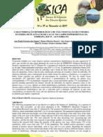 CARACTERIZAÇÃO DENDROLÓGICA DE UMA VEGETAÇÃO SECUNDÁRIA SUCEDIDA DE PLANTAÇÃO DE CACAU NO CAMPO EXPERIMENTAL DA EMBRAPA, KM 23 - ALTAMIRA-PA