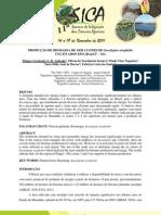 PRODUÇÃO DE BIOMASSA DE SEIS CLONES DE Eucalyptus urophylla CULTIVADOS EM GRAJAÚ