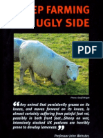 Sheep Farming's Ugly Side