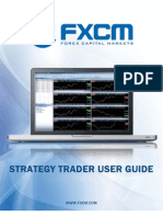 Strategy Trader Userguide 07282010