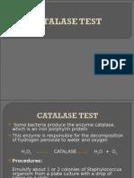 Catalase Test