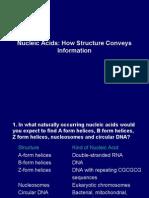 Nucleic Acids.Q&A Part1