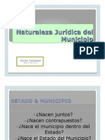 Unidad 3.-2.- Naturaleza jurídica del municipio