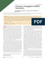David Solis, Jr. et al- Bleach-Imaged Plasmon Propagation (BlIPP) in Single Gold Nanowires