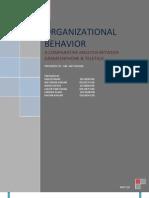 Organizational Behavior- Comparison Between 2 Companies
