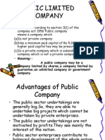 Advantages and Disadvantages of Public Company