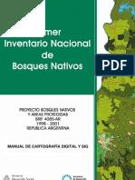 Pinbn Manual Cartografia Sig