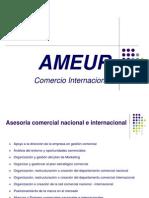 Ameur Comercio Internacional - Diciembre2009 (1)
