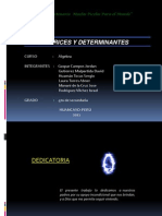 matricez y determinante