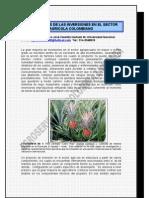 Fundamentos de Las Inversiones en El Sector Agricola[1]