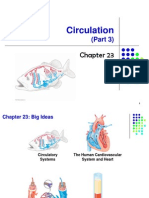 Bio 1011-Lecture F11-Chapter 23-Part 3