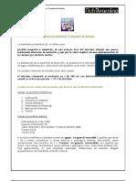 Insuficiencia Intestinal Transplante Intestino