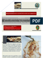 BIOFERTILIZANTES_CARAOTAS