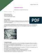 Tema 42-Ginecología UCA