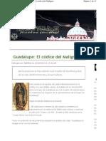 Guadalupe El Codice de Maligno