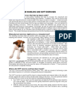 Canine Handling and SOFT Exercises