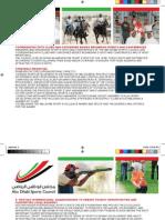 Abu Dhabi Sport Council Strategic Plan 2008 2012