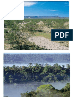 LSM2251-09 Species Abundance & Diversity