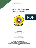 aspek radiologi infeksi pada traktus urinarius