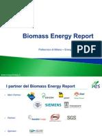 Politecnico Di Milano (Energy & Strategy Group) - Presentazione Report Biomasse 2011