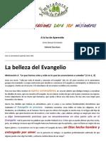 Victor Manuel Fernández. Quince motivaciones para ser misioneros. Cap. 2