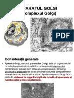 Curs 6 - Aparatul Golgi