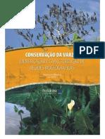 Venticinqueetal2007 - A Araneofauna Das Varzeas Do Rio Amazonas