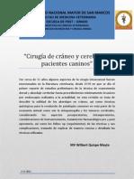 Monografia Cirugia de Craneo