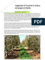 Factsheet Lucerne Inter Cropping With Cherries or Vines