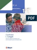 Tomo 1 - Prediabetes Y Diabetes Tipo 1 De Reciente Diagnóstico