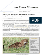 Conserving Wild Felids in Humanized Landscapes