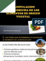 Manipulacion Postcosecha de Los Alimentos de Origen Vegetal