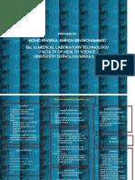 L1 Subtype of Acute Lymphocytic Leukemia ALL
