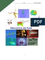 Meccanica Dei Fluidi Emodinamica