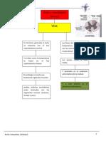 Mapa Conceptual Gonzalo Reyes Tarazona Barranca USP 3