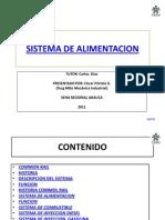 sistemadealimentacion-110802171313-phpapp01