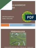 Penyebaran Mangrove Di Indonesia