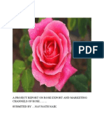 Rose Export and Marketing Channels
