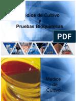 MEDIOS DE CULTIVO Y PRUEBAS BIOQUIMICAS
