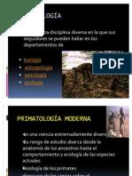 EXPOCICION DE PRIMATOLOGIA