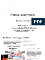 Or o Facial Embryology