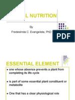 Bio121 Mineral Nutrition 2