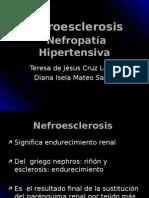 Nefroesclerosis