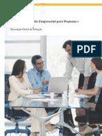 SAP Business One em Português