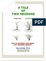 A Tale of Two Neurons 010112