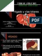 Hígado y vías Biliares (DIMS)