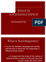 What is Sociolinguistics