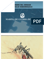 Fiebre Del Dengue