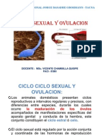 Ciclo_Sexual_y_[]vulación
