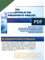 Conceptualización Presupuesto Público